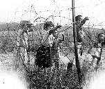 Korean children begging through the Concertina wire perimeter